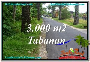 Exotic 3,000 m2 LAND FOR SALE IN TABANAN BALI TJTB297