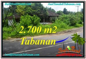 Exotic Tabanan Kerambitan BALI LAND FOR SALE TJTB299