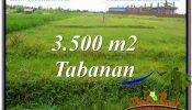 Affordable PROPERTY LAND FOR SALE IN TABANAN TJTB302