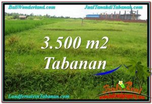 Exotic PROPERTY LAND FOR SALE IN TABANAN TJTB302