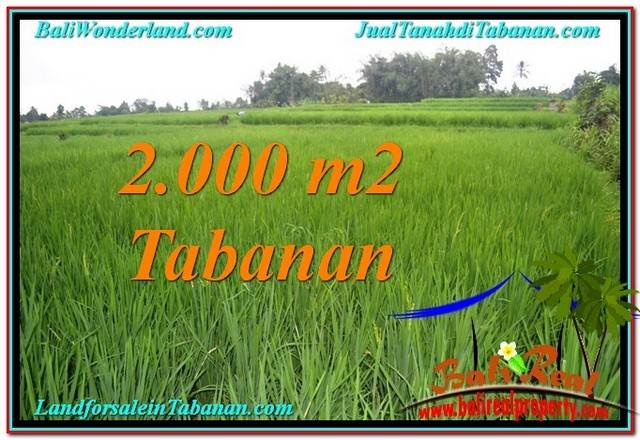Magnificent PROPERTY 2,000 m2 LAND IN TABANAN FOR SALE TJTB303
