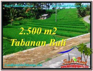 2,500 m2 LAND SALE IN TABANAN TJTB305