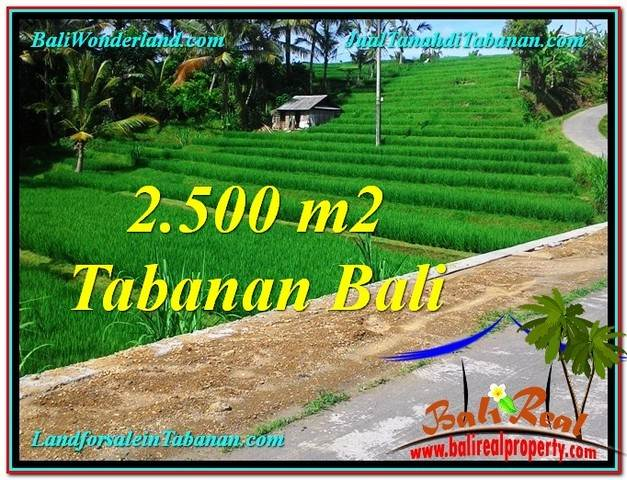 Beautiful PROPERTY LAND IN Tabanan Penebel BALI FOR SALE TJTB305