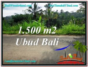 Magnificent PROPERTY 1,500 m2 LAND IN Ubud Tegalalang FOR SALE TJUB556