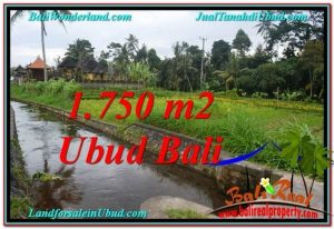 Beautiful PROPERTY Ubud Tampak Siring 715 m2 LAND FOR SALE TJUB557