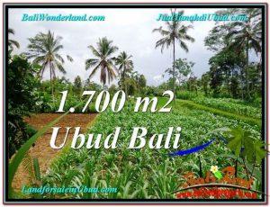 FOR SALE Exotic LAND IN Ubud Payangan BALI TJUB560