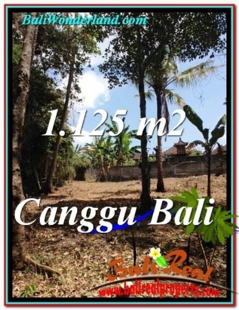 Affordable PROPERTY 1,125 m2 LAND IN Canggu Pererenan BALI FOR SALE TJCG208