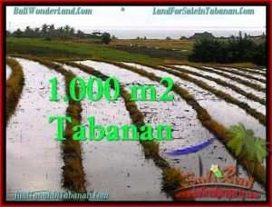 Exotic 1,000 m2 LAND FOR SALE IN TABANAN BALI TJTB261