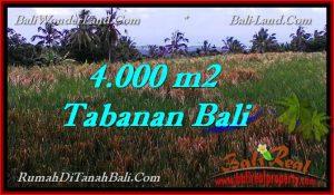 LAND IN Tabanan Selemadeg BALI FOR SALE TJTB288