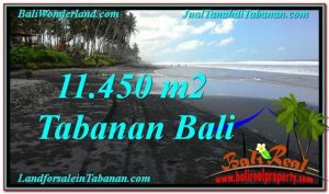 FOR SALE Beautiful LAND IN Tabanan Kerambitan BALI TJTB291