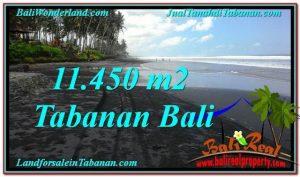 FOR SALE Beautiful LAND IN Tabanan Kerambitan BALI TJTB291