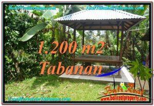 Beautiful PROPERTY TABANAN LAND FOR SALE TJTB294