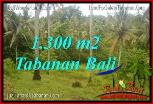 Affordable PROPERTY Tabanan Selemadeg BALI LAND FOR SALE TJTB314
