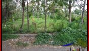 Beautiful PROPERTY LAND IN UBUD BALI FOR SALE TJUB536