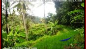 FOR SALE Exotic PROPERTY LAND IN UBUD TJUB538