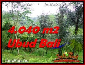 Affordable PROPERTY Ubud Tegalalang 4,040 m2 LAND FOR SALE TJUB555