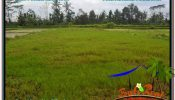 Magnificent LAND IN UBUD FOR SALE TJUB558