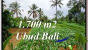 Affordable PROPERTY LAND SALE IN UBUD TJUB560