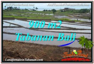 Beautiful 900 m2 LAND IN Tabanan Selemadeg FOR SALE TJTB308