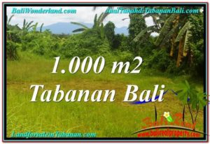 Exotic PROPERTY LAND IN TABANAN FOR SALE TJTB311
