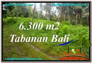 Affordable PROPERTY Tabanan Selemadeg 6,300 m2 LAND FOR SALE TJTB313