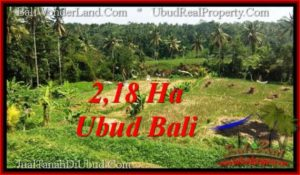 Magnificent LAND SALE IN UBUD TJUB546