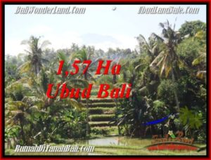 Beautiful PROPERTY 15,700 m2 LAND FOR SALE IN Sentral Ubud BALI TJUB549