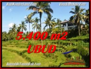Affordable LAND IN UBUD FOR SALE TJUB550