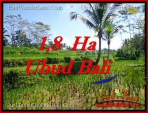 Affordable 16,000 m2 LAND SALE IN UBUD BALI TJUB553