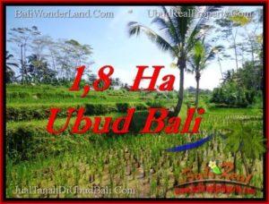 Affordable 16,000 m2 LAND SALE IN UBUD BALI TJUB553