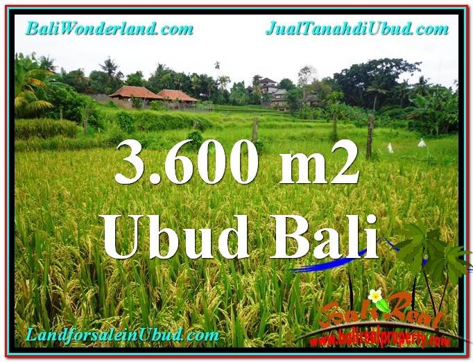 Beautiful PROPERTY 3,600 m2 LAND FOR SALE IN Sentral Ubud TJUB566