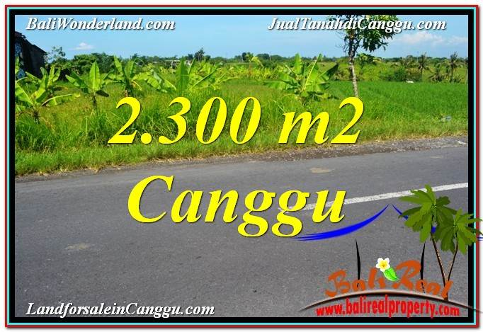 Exotic PROPERTY LAND FOR SALE IN Canggu echo beach TJCG209