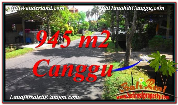 945 m2 LAND IN Canggu Pererenan FOR SALE TJCG210
