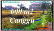 Beautiful CANGGU 600 m2 LAND FOR SALE TJCG211