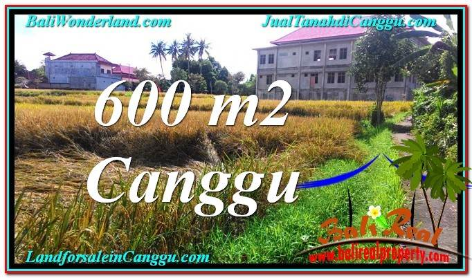 Exotic PROPERTY 600 m2 LAND IN Canggu Pererenan BALI FOR SALE TJCG211