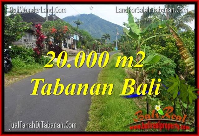 Beautiful 20,000 m2 LAND FOR SALE IN TABANAN BALI TJTB315