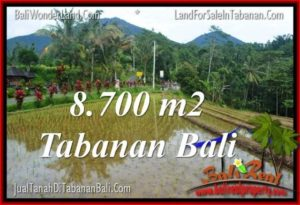 Affordable 8,700 m2 LAND FOR SALE IN TABANAN BALI TJTB316