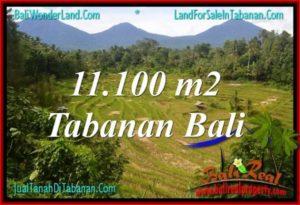 Affordable PROPERTY LAND IN TABANAN BALI FOR SALE TJTB320