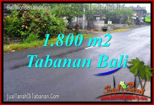 FOR SALE Affordable 1,800 m2 LAND IN Tabanan Kota BALI TJTB321
