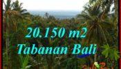 Affordable PROPERTY 20,150 m2 LAND IN TABANAN FOR SALE TJTB322