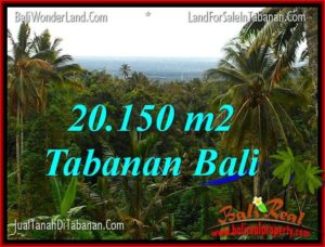 Exotic PROPERTY 20,150 m2 LAND IN TABANAN FOR SALE TJTB322