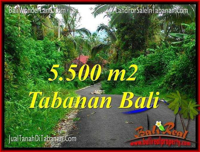 Beautiful PROPERTY 5,500 m2 LAND SALE IN TABANAN BALI TJTB323