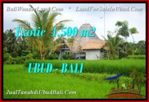 1,500 m2 LAND IN Ubud Pejeng FOR SALE TJUB541