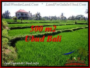Magnificent 500 m2 LAND IN Sentral Ubud FOR SALE TJUB543