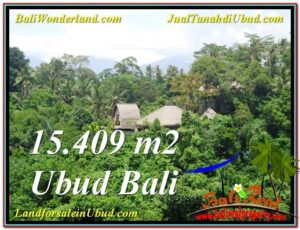 FOR SALE Exotic 15,490 m2 LAND IN UBUD TJUB568