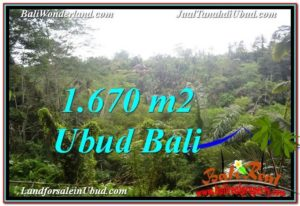 Magnificent 1,670 m2 LAND SALE IN UBUD BALI TJUB569