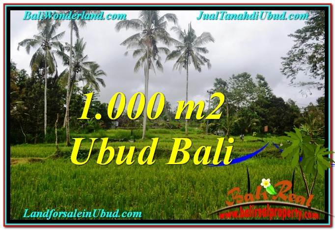 UBUD 1,000 m2 LAND FOR SALE TJUB570
