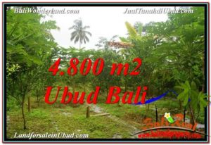 FOR SALE Beautiful 4,800 m2 LAND IN UBUD BALI TJUB571