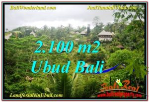 Exotic PROPERTY LAND FOR SALE IN UBUD TJUB572