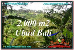 Affordable PROPERTY 2,000 m2 LAND FOR SALE IN Ubud Payangan TJUB573